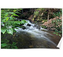 Bushkill waterfall creek with full spring water  Poster