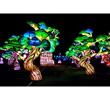 A Forest of Lanterns Photographic Print