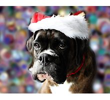 The Colour Of Christmas Photographic Print