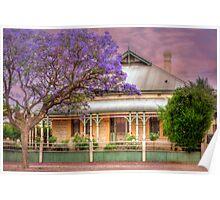 Jacaranda - McHenry Street, Murray Bridge, South Australia Poster