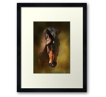 Ronald Framed Print