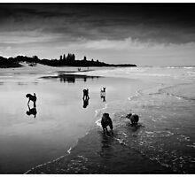 Best Friends On Beach by gmb22