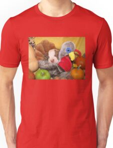 Uno Asleep With The Turkey Unisex T-Shirt