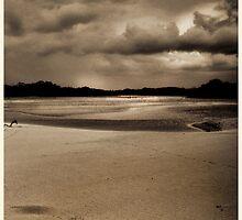 Currimundi Lake Dec 2011 by gmb22