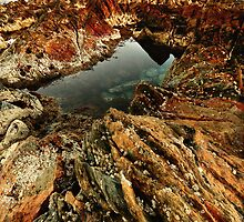 Rockpool at Edgecumbe by Garth Smith