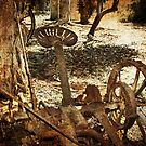Rusty Relic by KathyT