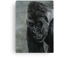 Tinted Charcoal Gorilla Canvas Print