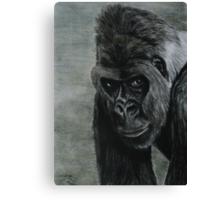 Tinted Charcoal Gorilla Canvas Print