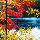 The Glory of a New England Autumn by Anita Pollak