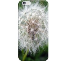 dandy iphone case iPhone Case/Skin