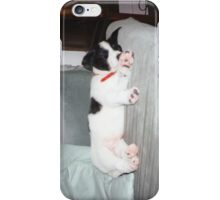 Pongo Pup iPhone Cover iPhone Case/Skin