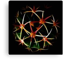 Fractal And Spherical Symmetry Canvas Print