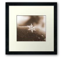 One Single Chance by Chance (re-sized for better viewing) Framed Print