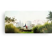 Yoga asana in the Park, New York Metal Print