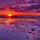 """""""Shimmering At Sunrise"""" by Phil Thomson IPA"""