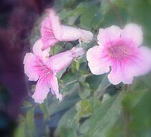 Pink bells by DoriSanz