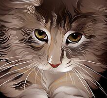 Cat illustration by Zumra M. Waheed
