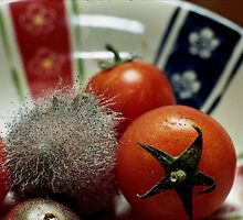 Mouldy Tomato by Thomas Martin