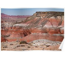 The Painted Desert  8013 Poster