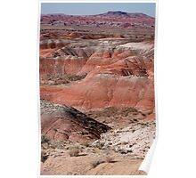 The Painted Desert  8024 Poster