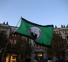 Anonymous Flag at Occupy London, St Paul's  by Jason Gleeson