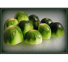 Cucumber Heads Photographic Print