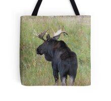 Bull Moose in Colorado Tote Bag