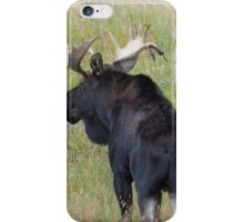 Bull Moose in Colorado iPhone Case/Skin