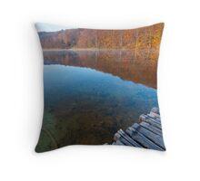 Looking at the lake Throw Pillow