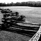 Recinzione di legno - Numero due by Glenn Cecero