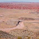 The Painted Desert 8042 by Bo Insogna