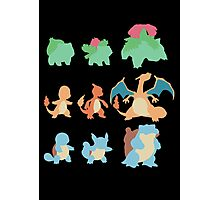 Evolution of Pokemon Photographic Print