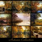 Autumn Collection by Jessica Jenney
