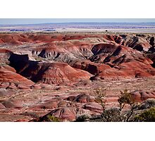 The Painted Desert  8062 Photographic Print