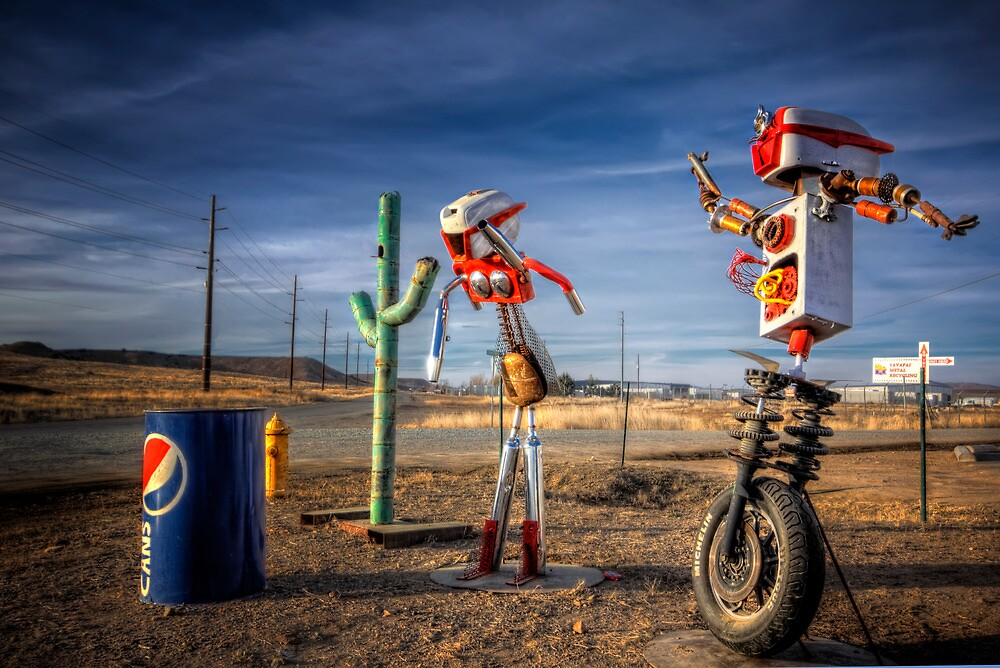 Mr. and Mrs. Bot by Bob Larson