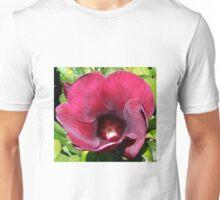 Allamanda Winter Velvet Unisex T-Shirt