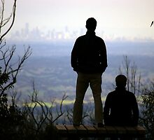 View of Melbourne from Mt. Sugarloaf by Robert  Welsh