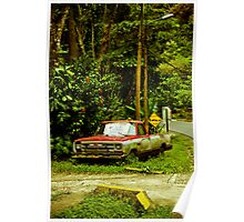 Costa Rica-3 Poster