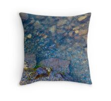 Fresh Water Pebbles Throw Pillow