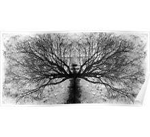 Paper Tree Poster