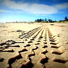 Tyre Tracks.  by MellyClaire