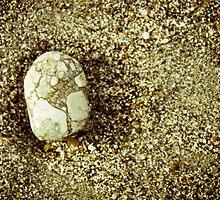 Beach Stone-5 by ScaredylionFoto