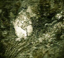 Beach Stone-7 by ScaredylionFoto