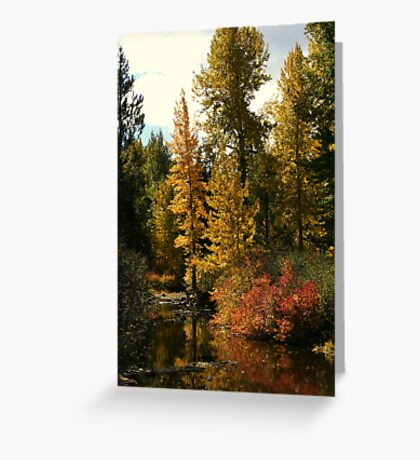 """Autumn Reflections"" Greeting Card"
