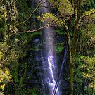 Erskine Falls Beauty by LJ_©BlaKbird Photography
