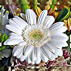 White Gerbera Daisy and Lily Buds by MidnightMelody