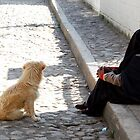 """Man's"" Best Friend by melissatoledo"
