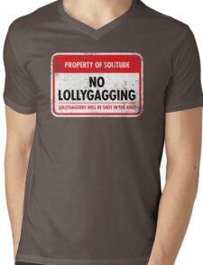 Solitude Municipal Ordinance Mens V-Neck T-Shirt