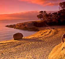 Honeymoon Bay by Ross Jardine