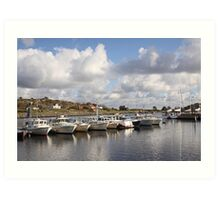 South Koster harbour Art Print
